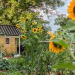 hišo in vrt